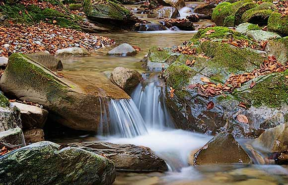 Bewegteswasser