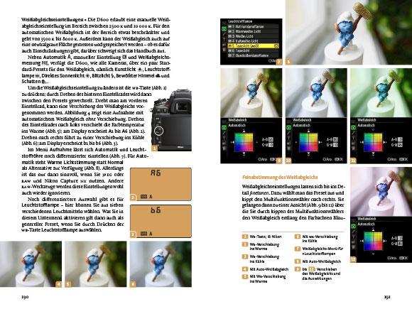 D600 Buch Korrektur 96